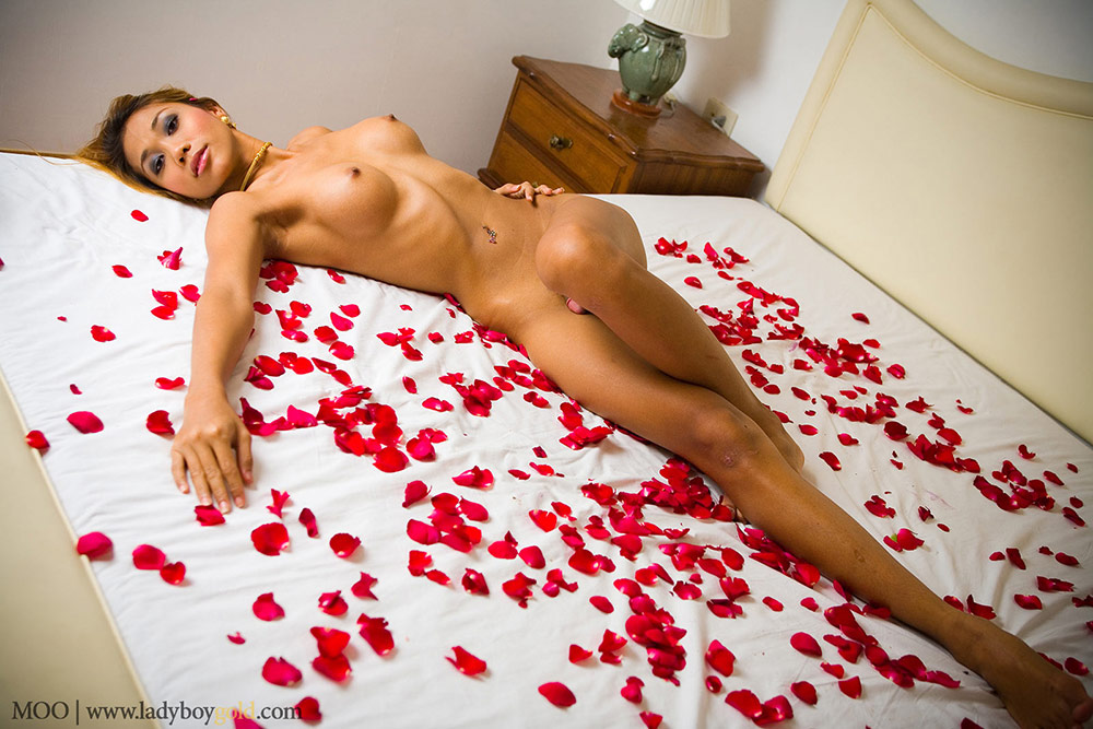 Ladyboy Moo Just Rolling Around On The Rose Petals